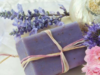 Violet Rose Purple Soap Shell Lavender Nature